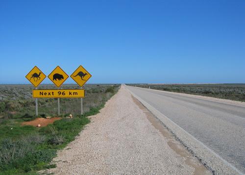 Kiwis' easier pathway to Australian PR BridgeAus